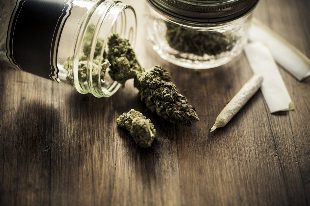 Osoby cierpiące na epilepsję wyrażają subiektywne zdanie na temat cannabis, TanieSianie, Tanie Sianie