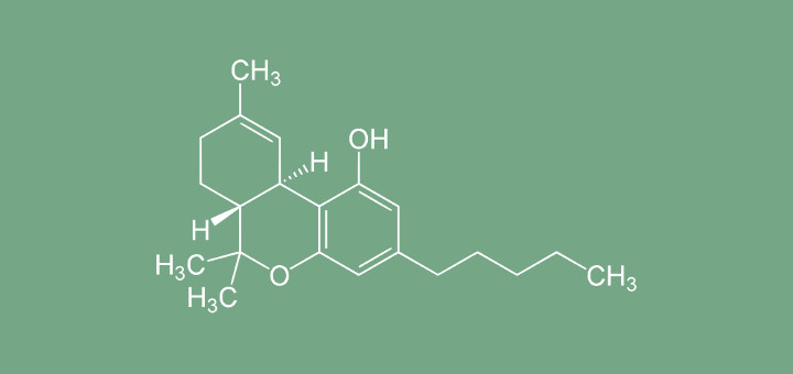 Syntetyczne kannabinoidy stanowią zagrożenie, TanieSianie, Tanie Sianie