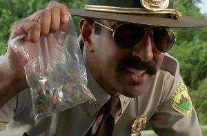 Co policja robi ze skonfiskowaną marihuaną?, TanieSianie, Tanie Sianie
