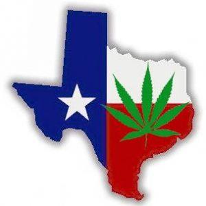 Teksański polityk chce dekryminalizacji marihuany, TanieSianie, Tanie Sianie