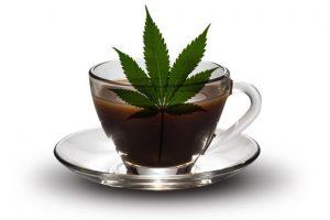 Czy konsumenci Stanów Zjednoczonych wiedzą, że dostarczają swoim organizmom chińskie produkty zawierające marihuanę?, TanieSianie, Tanie Sianie