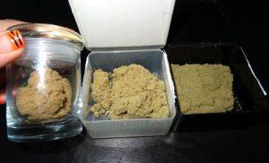 Proteiny, TanieSianie, Tanie Sianie