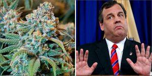 Rekreacyjna marihuana w New Jersey, TanieSianie, Tanie Sianie