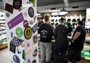 Amerykanie popierają legalizację marihuany, TanieSianie, Tanie Sianie