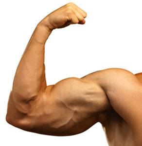 CBD a budowanie mięśni?, TanieSianie, Tanie Sianie
