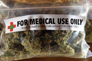 Medyczna marihuana dla zwierząt domowych, TanieSianie, Tanie Sianie