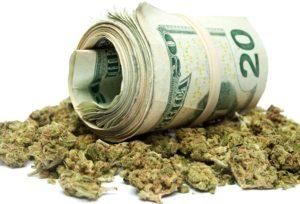Każdy lekarz powinien zalecać medyczną marihuanę, TanieSianie, Tanie Sianie