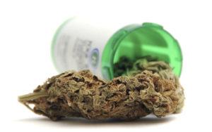 W jakich przypadkach pacjenci stosują marihuanę, TanieSianie, Tanie Sianie