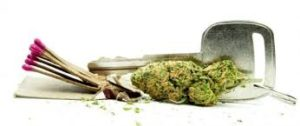 Mity o marihuanie, TanieSianie, Tanie Sianie