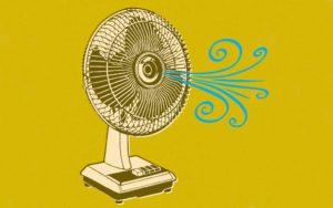Poprawa cyrkulacji powietrza w uprawie, TanieSianie, Tanie Sianie