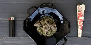 Czy naprawdę można mrozić marihuanę?, TanieSianie, Tanie Sianie