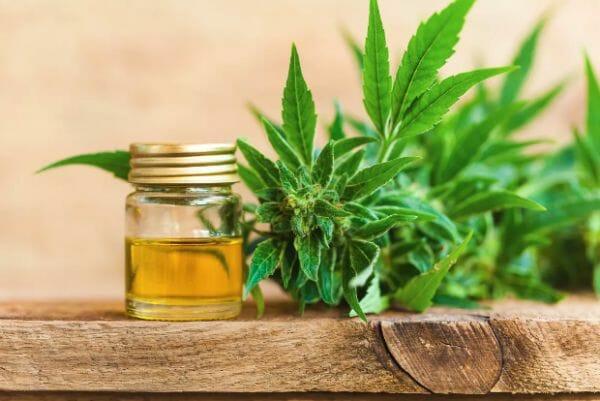 Różne Sposoby Uprawy Medycznej Marihuany, TanieSianie, Tanie Sianie