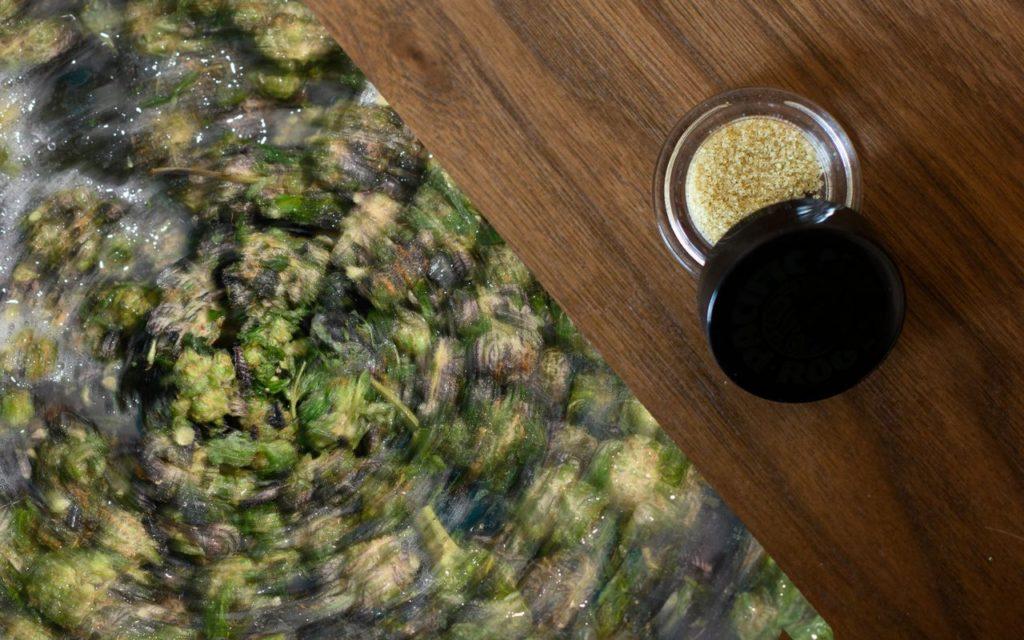 50% Wzrost Sprzedaży Marihuany, TanieSianie, Tanie Sianie