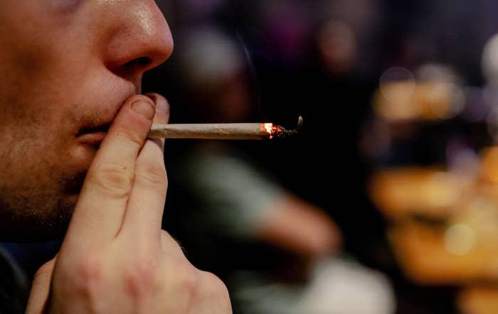 Fundusz USA Wykupił Brytyjską Firmę Cannabis, TanieSianie, Tanie Sianie