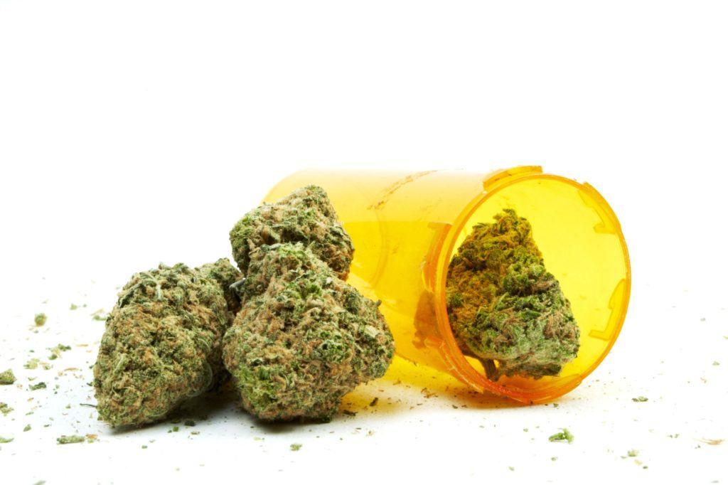 Marihuana Nie Zwiększa Ryzyka Wystąpienia Zapalenia Płuc, TanieSianie, Tanie Sianie