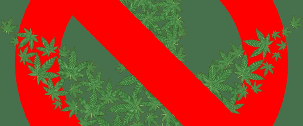 Legalizacja Marihuany w Nowej Zelandii Nie Została Przyjęta, TanieSianie, Tanie Sianie